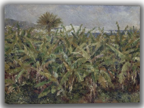 Renoir, Pierre Auguste: Field of Banana Trees. Fine Art Canvas. Sizes: A4/A3/A2/A1 (004111)
